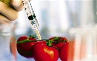 Η σχέση της επισιτιστικής κρίσης με τα μεταλλαγμένα τρόφιμα