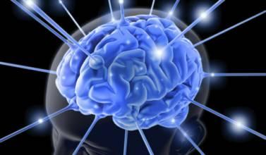 Εντοπίστηκε η περιοχή του ανθρώπινου εγκεφάλου που αναγνωρίζει τα λάθη και τα διορθώνει