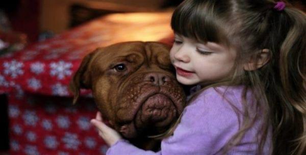 Οι σκύλοι χαίρονται και λυπούνται όπως οι άνθρωποι