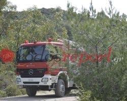 Έκτακτο: Φωτιά στη Ρόδου Καλλιθέας