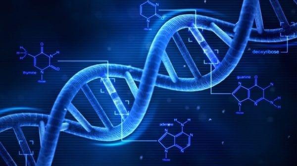 ΕΛΛΗΝΙΚΟ DNA: Ενα Μοναδικό Φαινόμενο