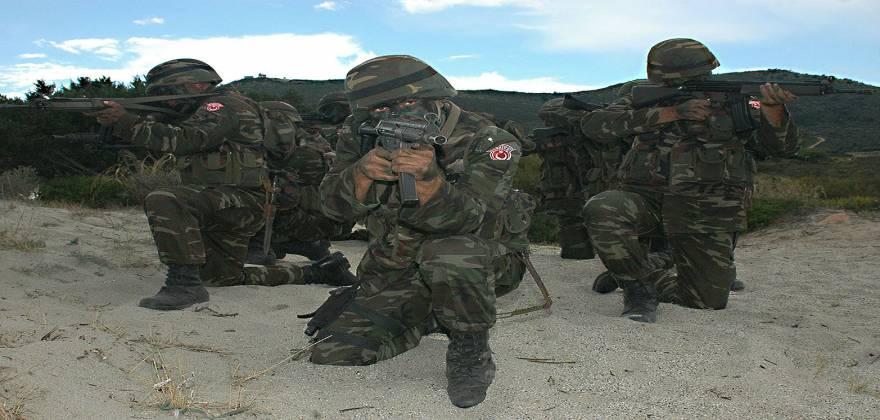 Turkish_troops