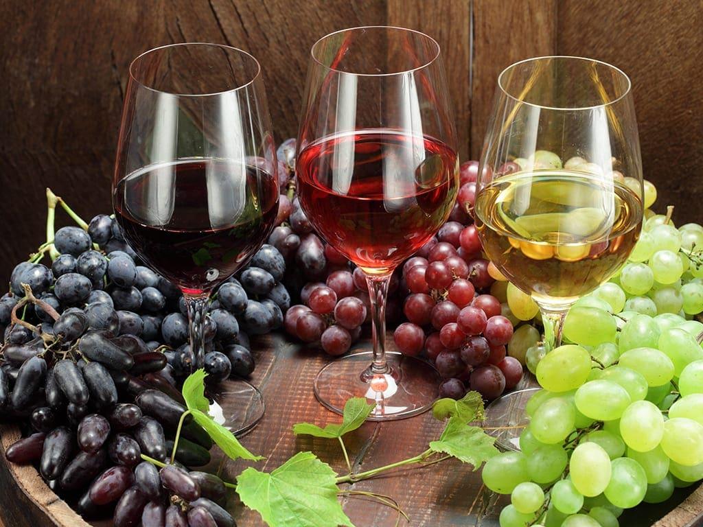 Η ιστορία του ροδίτικου κρασιού !