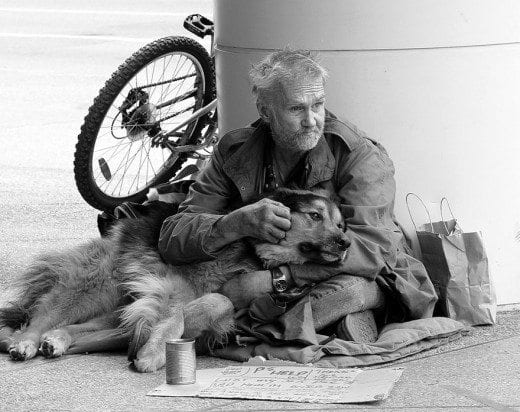 712365_homeless-dogs-and-owners-16