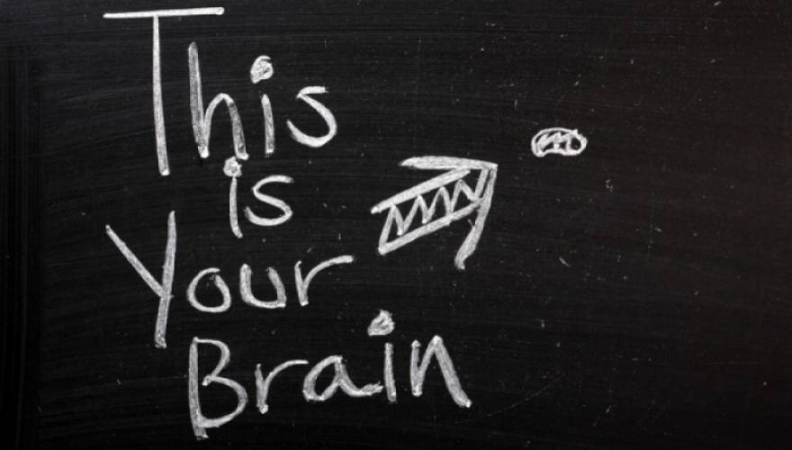 brain_9