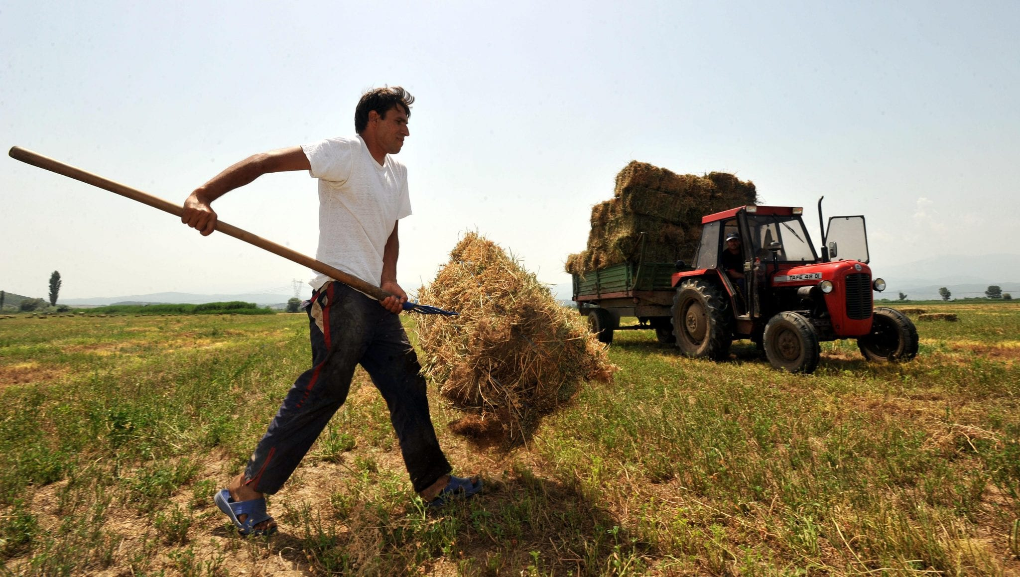 An unidentified farmer collects a bale of hay near southeastern Macedonian village of Stojakovo, on Monday, June 14, 2010.   (AP Photo/Boris Grdanoski)