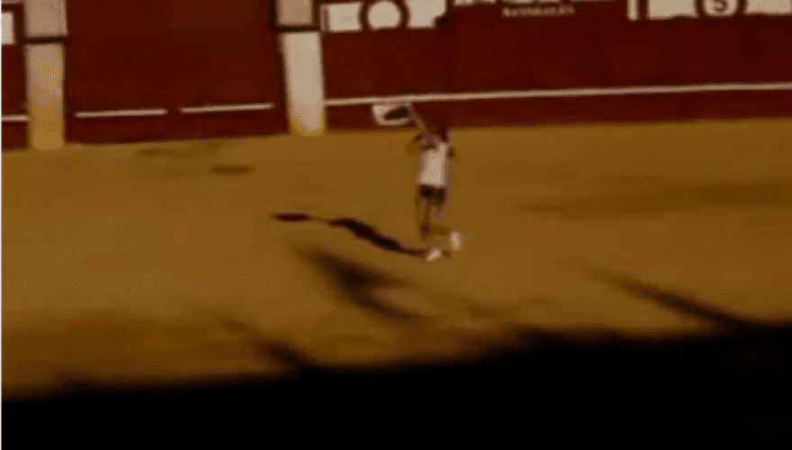 Ισπανία: Aκτιβίστρια πήδηξε στην αρένα και αγκάλιασε ταύρο λίγο πριν τον θανατώσουν (Video)