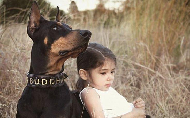 girldog1