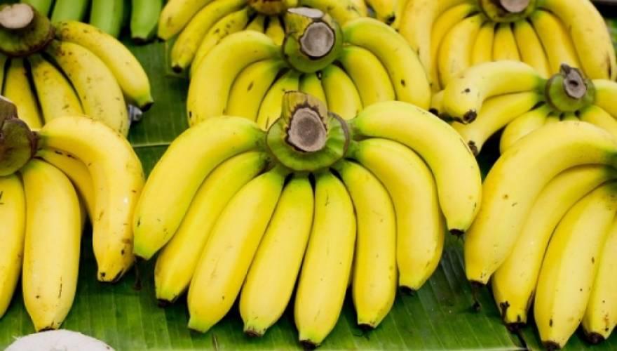 banana_9