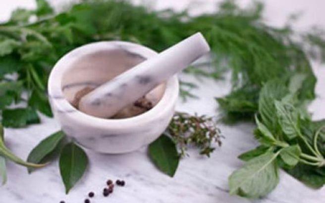 herbs_533_355.medium