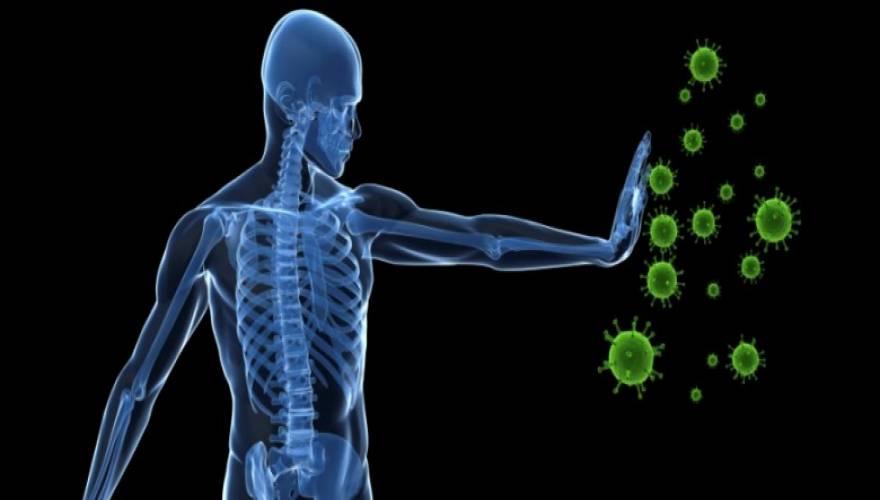 inspireyourlife_immune-system-780x358