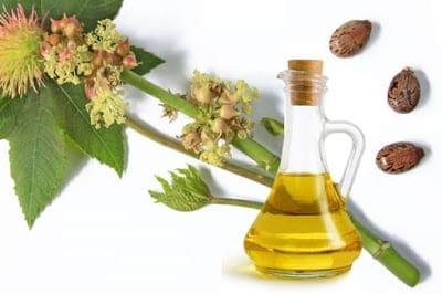 Castor-oil1