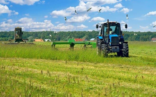 agriculture.medium