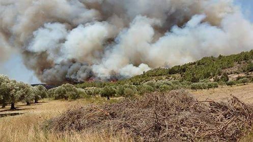 Μέτωπο προς την Αρνίθα και Μονόλιθο – Συνεχίζει να καίει η φωτιά ανεξέλεγκτα