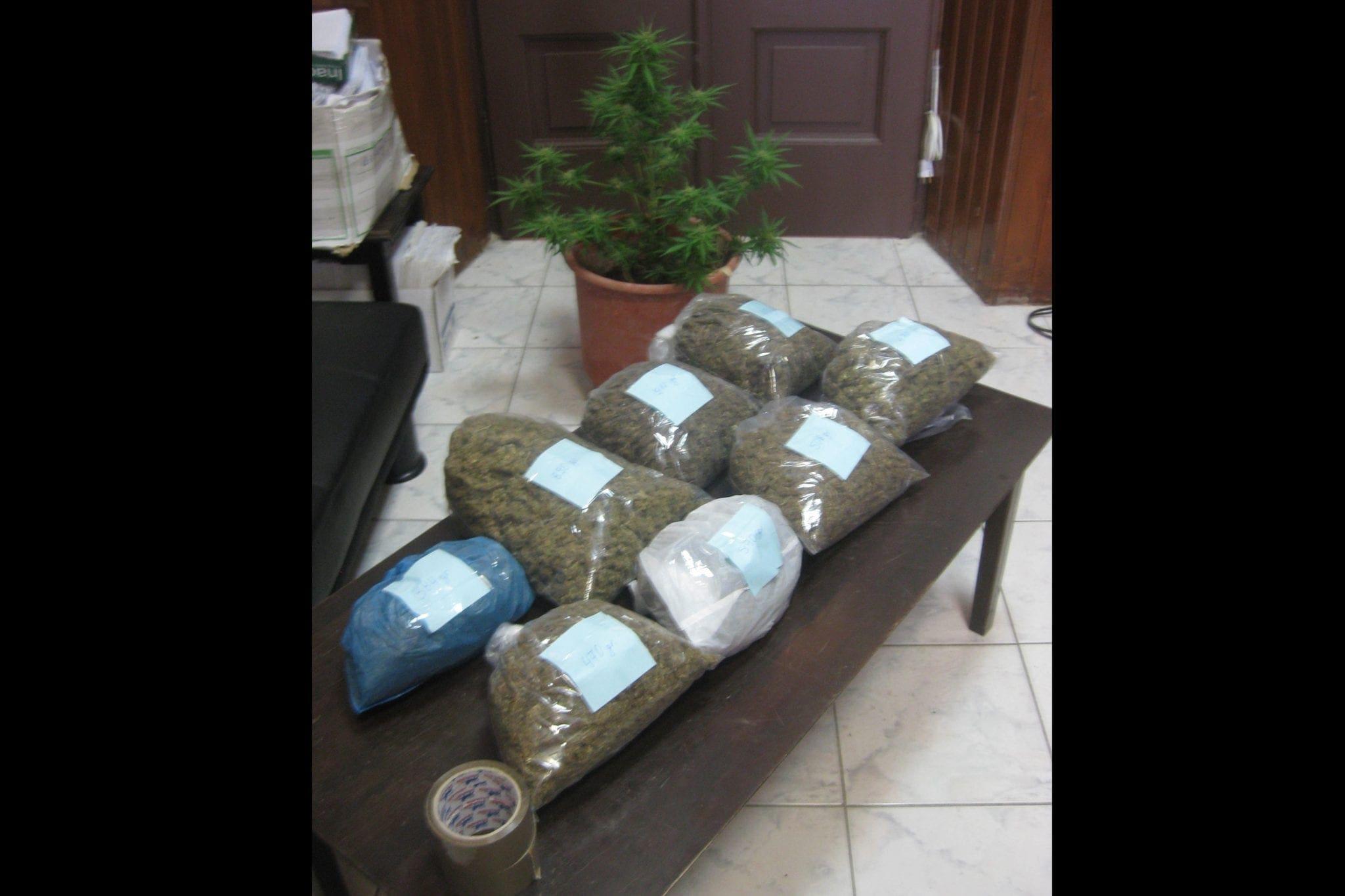 dt-narkotika-kannabh-kos-f1