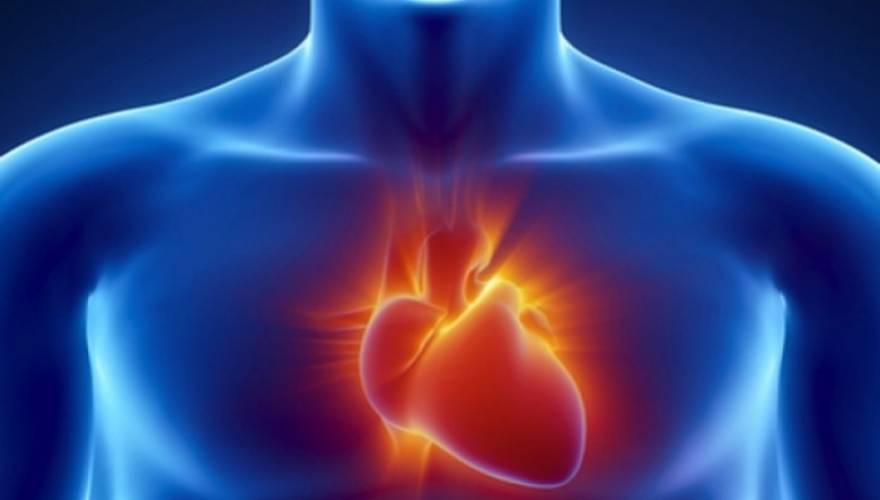 Τα οφέλη των φυτικών ινών για την καρδιά σας