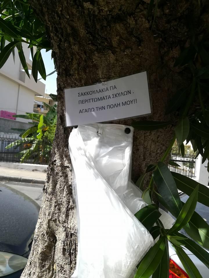Ρόδος : Απηύδησαν με τα περιττώματα των σκύλων και κρέμασαν σακούλες στα δέντρα