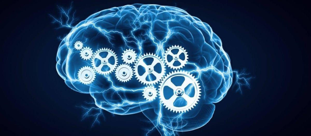 Έρευνα: Βρέθηκαν «τα γονίδια της εξυπνάδας»