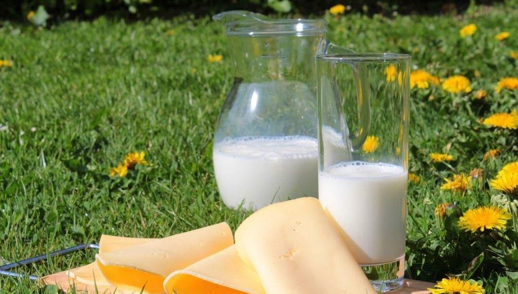 Έρευνα: Και τα γαλακτοκομικά με πλήρη λιπαρά ωφελούν την υγεία