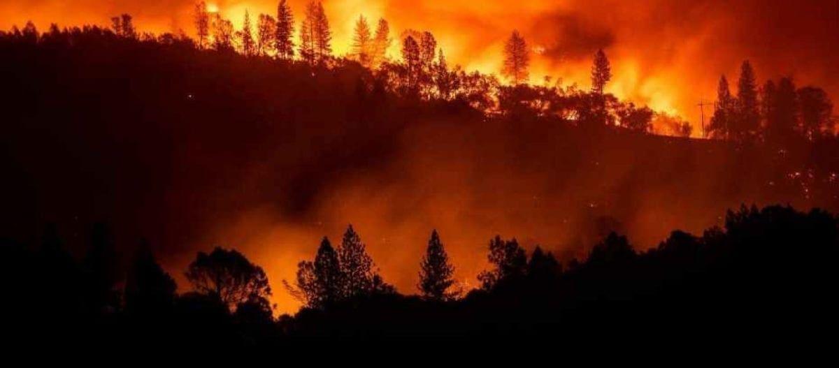 Kαλιφόρνια: 65 νεκροί και 630 αγνοούμενοι από τις φονικές πυρκαγιές! (βίντεο)
