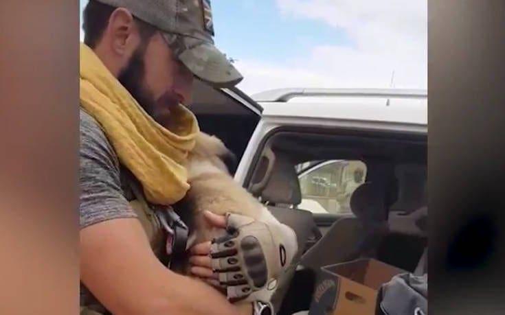 Στρατιώτης και σκύλος περνούν από πέντε χώρες, δύο πεδία μάχης και 5.000 χιλιόμετρα για να ξαναβρεθούν