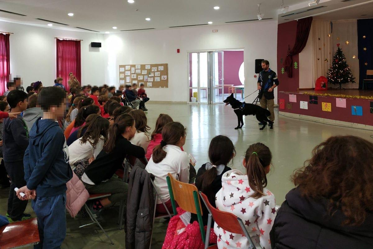 Αστυνομικός σκύλος συμμετείχε σε ενημερωτική διάλεξη με θέμα την προστασία των ζώων, στο 1ο Δημοτικό Σχολείο Κρεμαστής Ρόδου