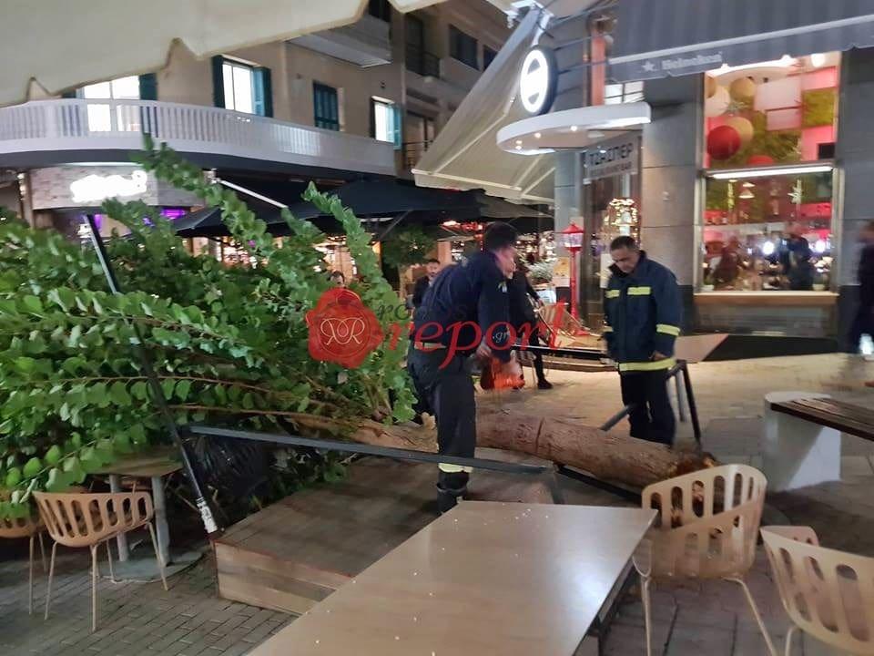 Συμβαίνει Tώρα Ρόδος : Έπεσε δέντρο πάνω σε καρέκλες και τραπέζια στον πεζόδρομο (φωτο & βίντεο)
