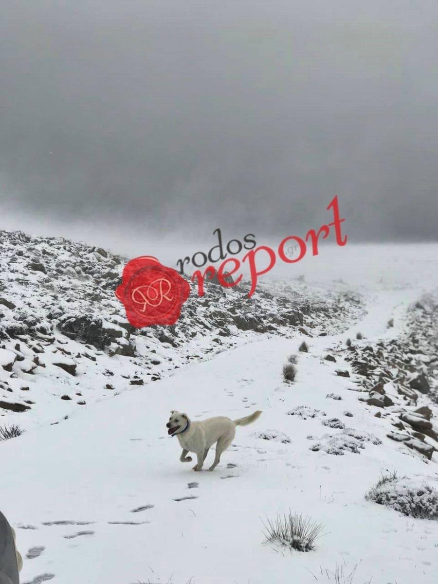 Στα λευκά ντύθηκε ο Αττάβυρος – Δείτε φωτογραφίες και βίντεο από το χιονισμένο βουνό !