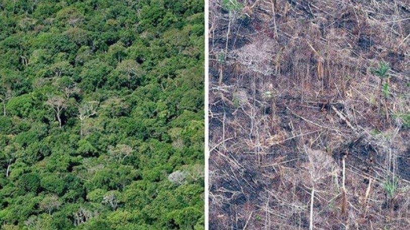 Το #10yearschallenge της Γης προκαλεί θλίψη κι αγανάκτηση (pics)