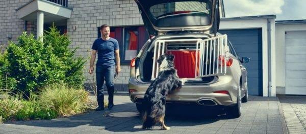 Τι πρέπει να ξέρετε όσοι οδηγείτε και έχετε στο Ι.Χ το σκύλο σας- Σημαντική η έρευνα της Ford