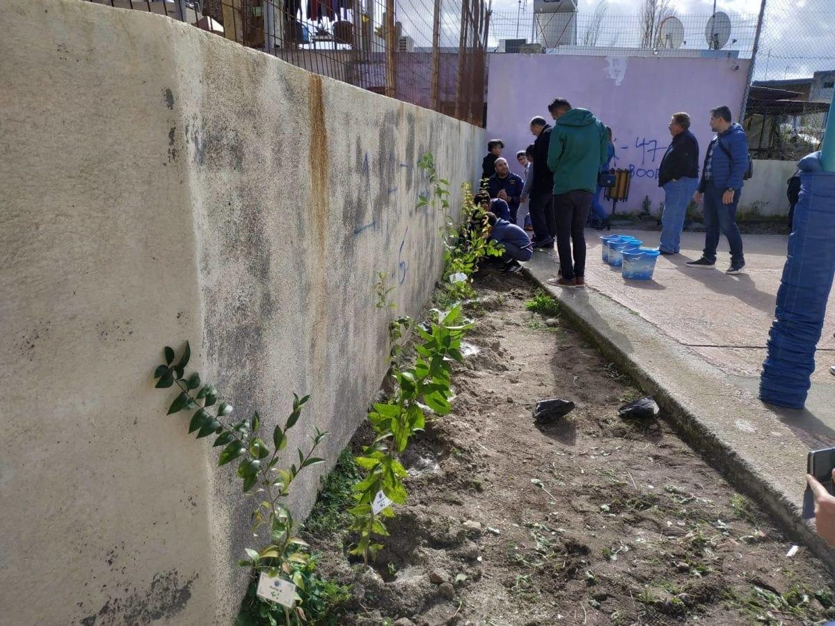 Φύτεψαν καλλωπιστικά φυτά στο 10ο Δημοτικό Σχολείο Ρόδου