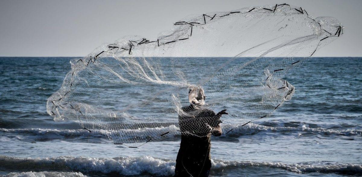Συναγερμός στο Αιγαίο: Ψάρια-δολοφόνοι όλο και πιο βόρεια στα ελληνικά νερά