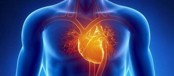 Τι είναι το ανέπαφο σύστημα τεχνητής νοημοσύνης που παρακολουθεί την καρδιά;