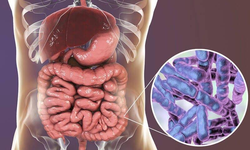 Προβιοτικά : 8 λόγοι που κάνουν καλό στην υγεία