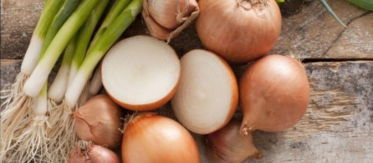 Η διατροφική αξία του κρεμμυδιού και θεραπευτικές ιδιότητες