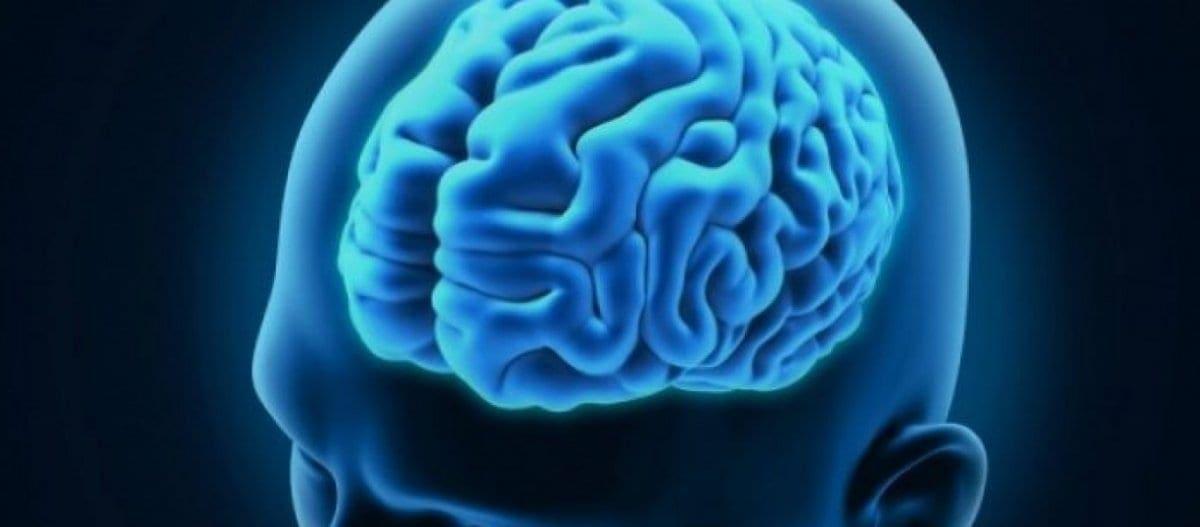 ΙΤΕ: Αλλαγή θεωρίας για τα εγκεφαλικά κύτταρα