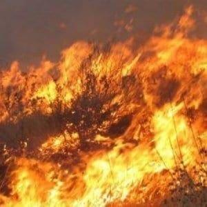 Αντιπυρική Περίοδος 2019 – Μέτρα πρόληψης – Αποφυγή επικίν-δυνων ενεργειών πρόκλησης πυρκαγιών- Μέτρα προστασίας