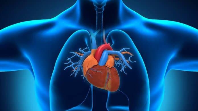 Ημερίδες για τις καρδιαγγειακές νόσους σε Ρόδο και Μεγίστη