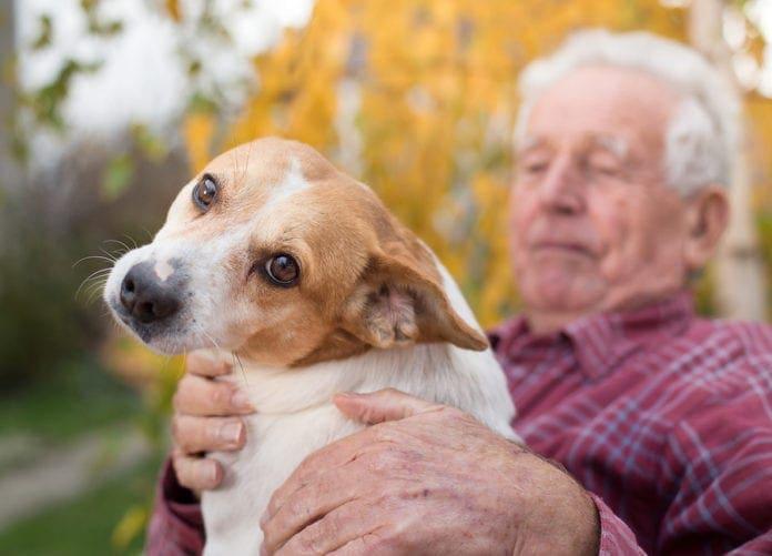 Πως βοηθάει την υγεία σας να έχετε σκύλο