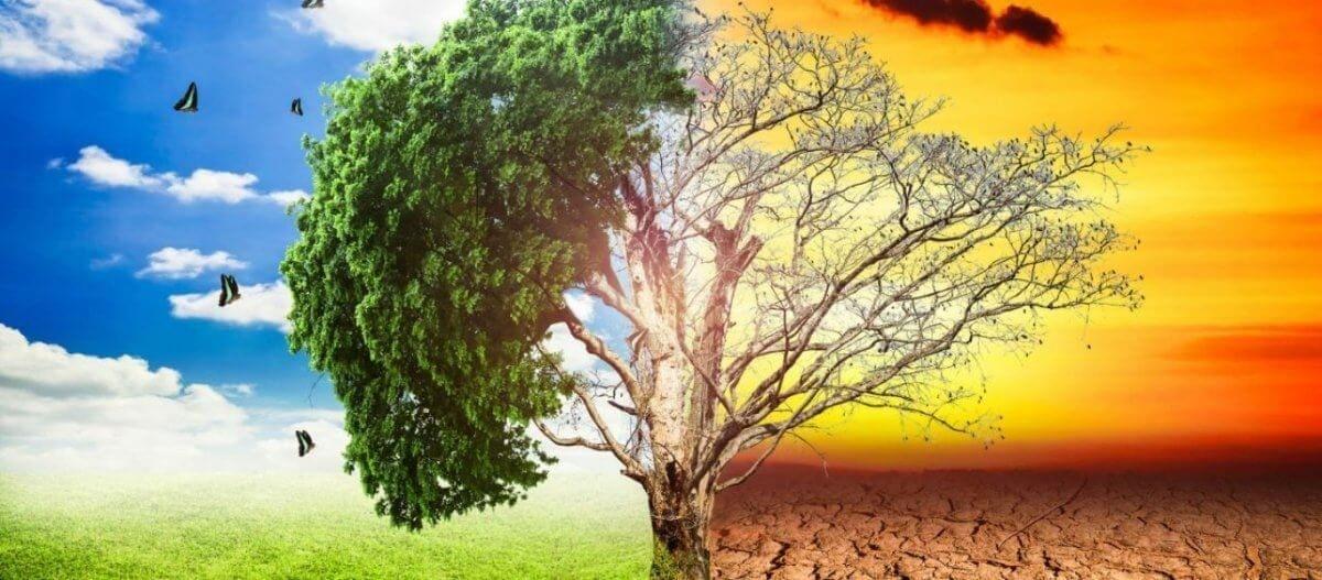 Επιστήμονες από 153 χώρες προειδοποιούν: Έρχονται «ανείπωτα βάσανα» με την κλιματική αλλαγή