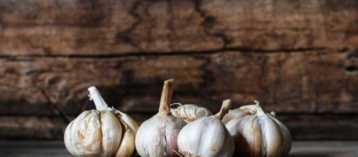 Έρευνα : Φάτε σκόρδο για να ζήσετε μέχρι τα βαθιά γεράματα