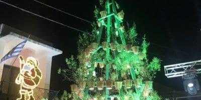 Καλυθιές : Ένα Χριστουγεννιάτικο δέντρο διαφορετικό από όλα τα άλλα