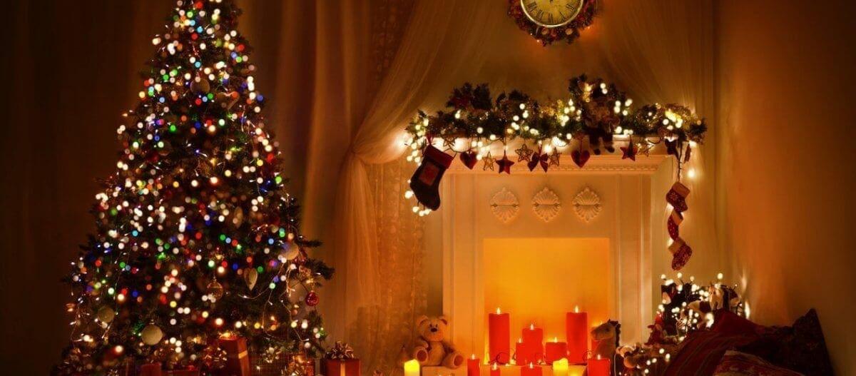 Μέχρι και 25.000 ζωύφια έχει κάθε χριστουγεννιάτικο δέντρο που βάζουμε σπίτι μας!
