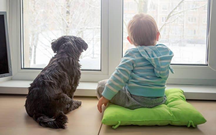Παιδιά και σκύλοι
